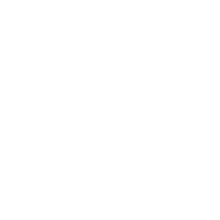 Express parcel icon